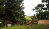 Trail Walk RIVIERE-SALEE - JOUBADIÈRE - MORNE CONSTANT - PAGERIE - Photo 33