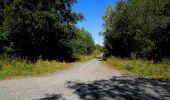 Trail Walk DAMPLEUX - en forêt de Retz_80_sur la Route Tortue et la Route Droite - Photo 271