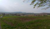 Trail Walk CHAGEY - 70 Chagey le menhir - Photo 5