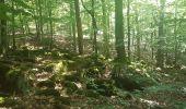 Trail Walk WASSELONNE - Geisweg - Elmerforst -Westhoffen - Photo 41