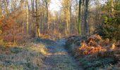 Trail Walk SAINT-JEAN-AUX-BOIS - en forêt de Compiègne_33_12_2019_les Tournantes de l'étang Saint-Jean et des Prés Saint-Jean - Photo 190