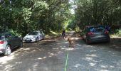 Trail Walk SARZEAU - 2019-08-10 GR34 GOLFE DU MORBIHAN CÔTIER  AUTOUR  DE SARZEAU - Photo 13