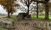 Randonnée Marche Durbuy - Boucle Barvaux Wéris Barvaux  - Photo 2