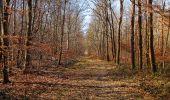 Trail Walk PIERREFONDS - en forêt de Compiègne_24_Tournantes sur le Voliard et sur la Fortelle_chaussée Brunehaut - Photo 91