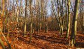 Trail On foot VIEUX-MOULIN - en forêt de Compiègne_23_la Grotte des Ramoneurs_le Mont Berny - Photo 102