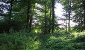Randonnée Marche HARAMONT - en forêt de Retz_79_08_2019_vers Taillefontaine et Retheuil par les lisières - Photo 23