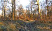 Trail Walk SAINT-JEAN-AUX-BOIS - en forêt de Compiègne_33_12_2019_les Tournantes de l'étang Saint-Jean et des Prés Saint-Jean - Photo 182
