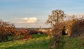 Randonnée Marche Couvin - RB-Na-27_Entre Eau Blanche et Eau Noire - Photo 3