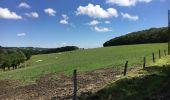 Randonnée Marche Havelange - Bois, Rivière et champs - Photo 10