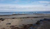 Randonnée Marche MESQUER - la pointe de Merquel à marée basse - Photo 13
