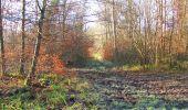 Trail Walk SAINT-JEAN-AUX-BOIS - en forêt de Compiègne_33_12_2019_les Tournantes de l'étang Saint-Jean et des Prés Saint-Jean - Photo 21
