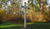 Trail Walk SAINT-JEAN-AUX-BOIS - en forêt de Compiègne_19_le Puits d'Antin_les Mares St-Louis_La Muette - Photo 165