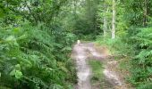 Trail Walk ORMOY-VILLERS - Grand Ormoy-Villers tour - Photo 12