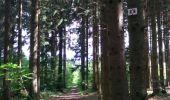 Randonnée Marche SENTHEIM - Sentheim Rossberg - Photo 25