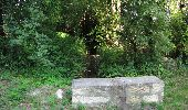 Randonnée Marche LACROIX-SAINT-OUEN - en forêt de Compiègne_35_la Croix Saint-Sauveur_le Ru du Goderu - Photo 36