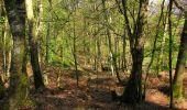 Randonnée Marche LONGPONT - en forêt de Retz_77_Longpont_Puiseux en Retz_AR - Photo 33