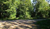 Trail Walk DAMPLEUX - en forêt de Retz_80_sur la Route Tortue et la Route Droite - Photo 258