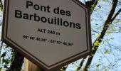 Randonnée Marche Libin - REDU ... vallée de la Lesse par le pont des Barbouillons. - Photo 6
