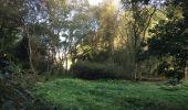 Randonnée Trail NEANT-SUR-YVEL - Autour des étangs à partir du gîte de tante Phonsine - Photo 5