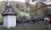 Randonnée Marche WILLER-SUR-THUR - 2019.11.13.Willer - Photo 1