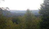 Randonnée Marche MUHLBACH-SUR-BRUCHE - Le Jardin des Fées par la cascade de Soulzbach - Photo 32