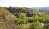 Randonnée Marche Namur - Balade dans les anciennes carrières d'Asty-Moulin - Photo 2