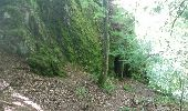 Randonnée V.T.T. WISEMBACH - Col de Sainte Marie Bagenelles AR - Photo 2