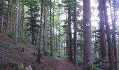 Randonnée Marche SENTHEIM - Sentheim Rossberg - Photo 9