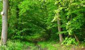 Randonnée Marche COYOLLES - en forêt de Retz_78_les rayons du Rond Capitaine - Photo 69