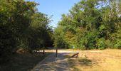 Randonnée Marche LACROIX-SAINT-OUEN - en forêt de Compiègne_35_la Croix Saint-Sauveur_le Ru du Goderu - Photo 29