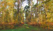 Randonnée Marche SAINT-JEAN-AUX-BOIS - en forêt de Compiègne_19_le Puits d'Antin_les Mares St-Louis_La Muette - Photo 22
