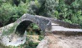 Trail Walk MONTAUROUX - Montouroux-Pont des Tuves-Pont de Rey - Photo 1