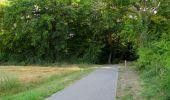 Randonnée Marche LACROIX-SAINT-OUEN - en forêt de Compiègne_35_la Croix Saint-Sauveur_le Ru du Goderu - Photo 42