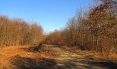 Trail Walk PIERREFONDS - en forêt de Compiègne_24_Tournantes sur le Voliard et sur la Fortelle_chaussée Brunehaut - Photo 20