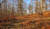 Trail On foot VIEUX-MOULIN - en forêt de Compiègne_23_la Grotte des Ramoneurs_le Mont Berny - Photo 11