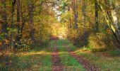 Randonnée Marche SAINT-JEAN-AUX-BOIS - en forêt de Compiègne_19_le Puits d'Antin_les Mares St-Louis_La Muette - Photo 39