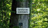 Trail Walk DAMPLEUX - en forêt de Retz_80_sur la Route Tortue et la Route Droite - Photo 192