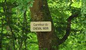 Randonnée Marche COYOLLES - en forêt de Retz_78_les rayons du Rond Capitaine - Photo 29