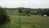 Randonnée Marche Havelange - Failon - Somal - Photo 9