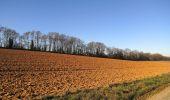 Trail Walk RETHEUIL - en forêt de Retz_76_dans les forêts de Retz et de Compiègne - Photo 55