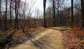 Trail On foot VIEUX-MOULIN - en forêt de Compiègne_23_la Grotte des Ramoneurs_le Mont Berny - Photo 85