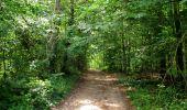 Randonnée Marche HARAMONT - en forêt de Retz_79_08_2019_vers Taillefontaine et Retheuil par les lisières - Photo 82