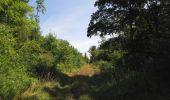Randonnée Marche LACROIX-SAINT-OUEN - en forêt de Compiègne_35_la Croix Saint-Sauveur_le Ru du Goderu - Photo 99