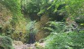 Randonnée Marche MUHLBACH-SUR-BRUCHE - Le Jardin des Fées par la cascade de Soulzbach - Photo 38