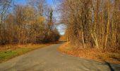 Trail On foot VIEUX-MOULIN - en forêt de Compiègne_23_la Grotte des Ramoneurs_le Mont Berny - Photo 72