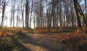 Trail Walk SAINT-JEAN-AUX-BOIS - en forêt de Compiègne_33_12_2019_les Tournantes de l'étang Saint-Jean et des Prés Saint-Jean - Photo 100