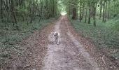Trail Walk SOISY-BOUY - boucle Soisy Bouy  - Photo 1