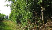 Randonnée Marche LONGPONT - en foret de Retz_ 41_Longpont_Vertes Feuilles_AR - Photo 123