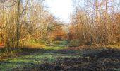 Trail Walk SAINT-JEAN-AUX-BOIS - en forêt de Compiègne_33_12_2019_les Tournantes de l'étang Saint-Jean et des Prés Saint-Jean - Photo 16