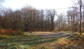 Trail Walk SAINT-JEAN-AUX-BOIS - en forêt de Compiègne_33_12_2019_les Tournantes de l'étang Saint-Jean et des Prés Saint-Jean - Photo 15